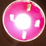 waveoflight156